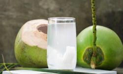 10 lý do người Ấn mệnh danh nước dừa là nước bất tử