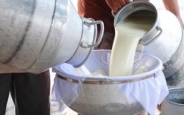 Dị ứng sữa bò, không thể uống nổi sữa tươi, bạn có giống tớ không ?