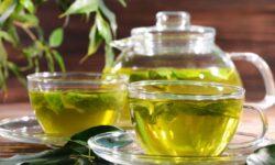 11 lợi ích tuyệt vời của trà xanh. Thức uống tốt nhất thế giới