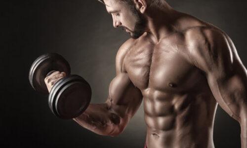 Tổng hợp những bài tập ngực với tạ đơn cực kỳ hiệu quả