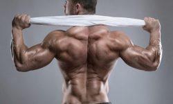 10+ bài tập cơ lưng xô với tạ đơn tại nhà hiệu quả tốt nhất