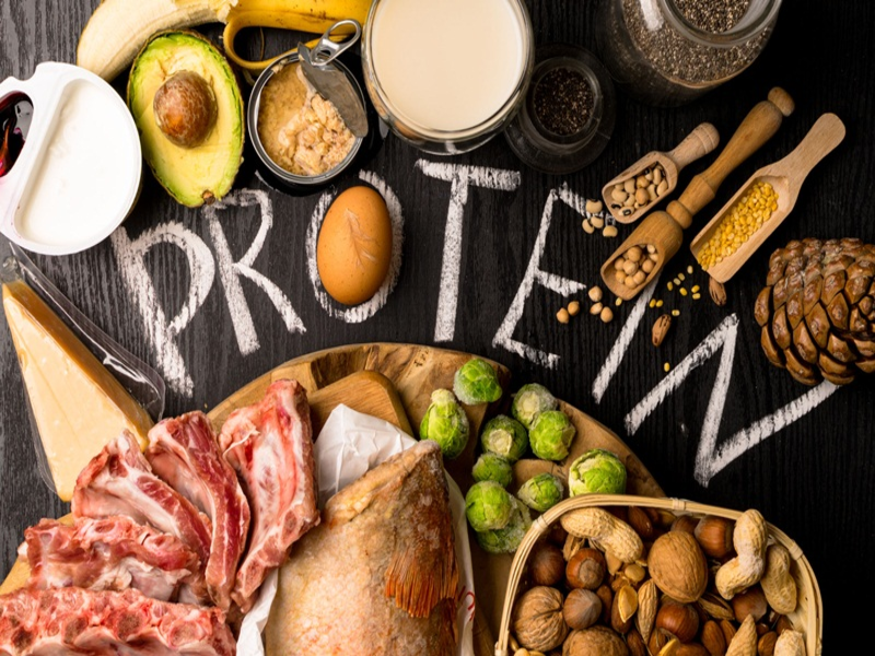 Những thực phẩm chứa protein