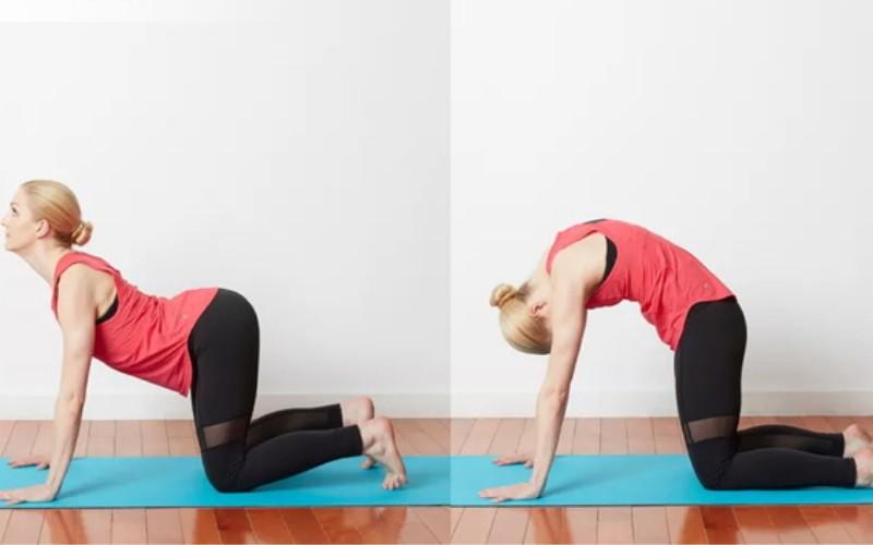 giảm mỡ vùng thắt lưng